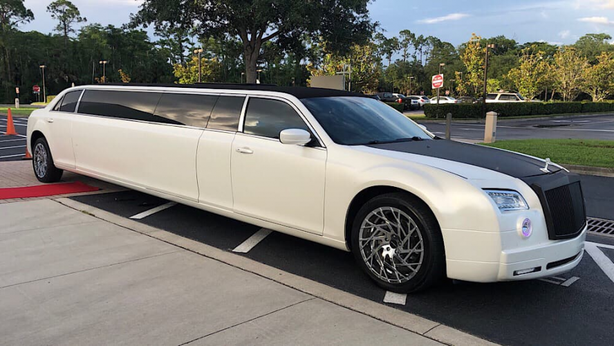 How to Ensure a Cruelty Free Limo Experience